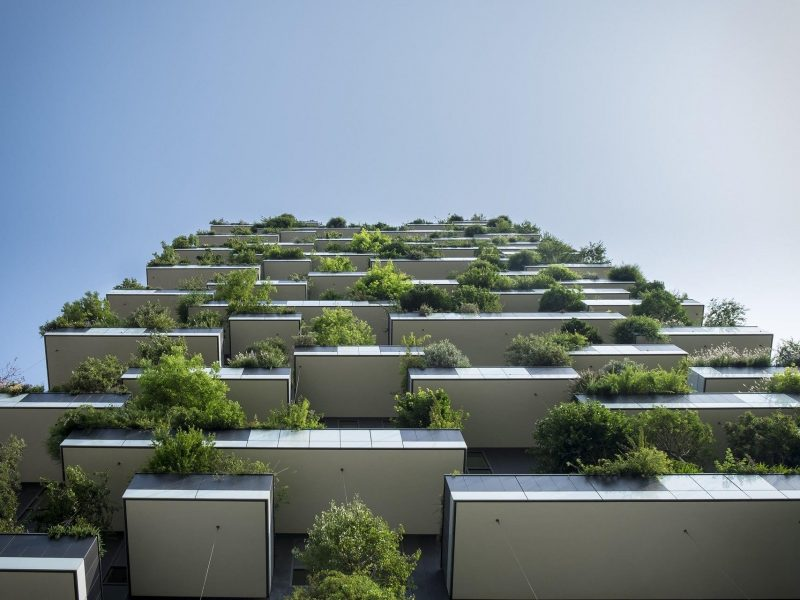 Turning Green Buildings into Smart Ones