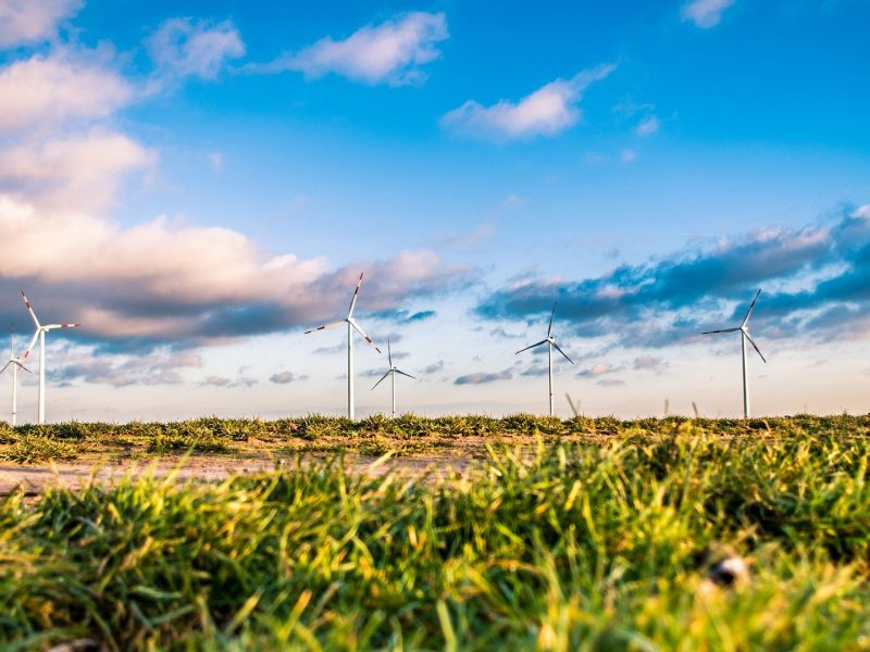 How Scotland is leading the way in green skills training in 2021
